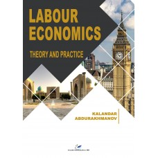 Labour Economics. Theory and practice Ebook